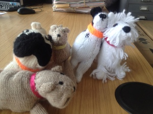 Identi-Knits. Miss the pet you left at home? Here is a miniature twin to comfort you.  Made for patients by Volunteers at Yeovil District Hospital.