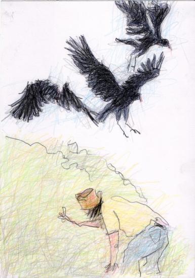 J Vultures Col